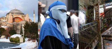 SD och mångkulturalismen